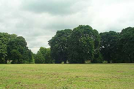 Coronation Recreation Ground Hersham